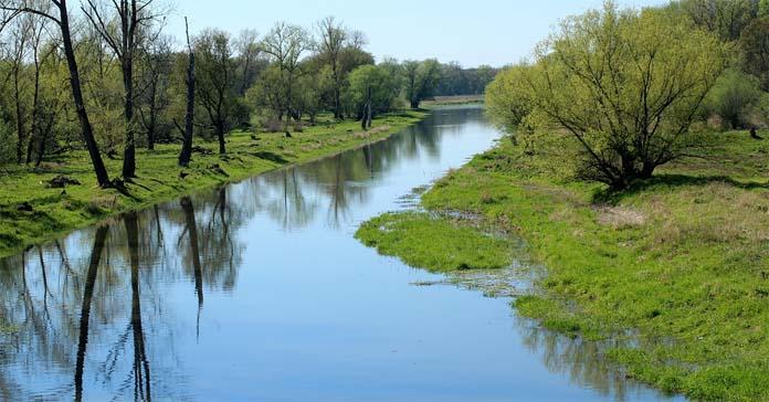 rzeki, rzeka, susza, susze, zmiany klimatu, WWF, walka z suszą