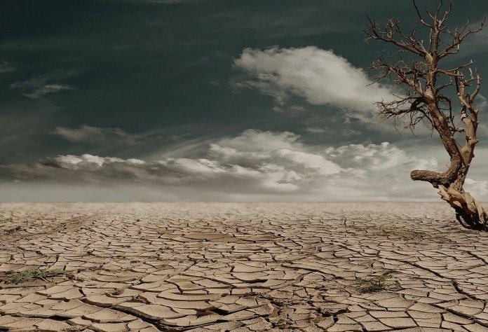 NCBR na froncie walki z suszą