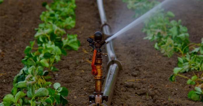 woda, susza, magazynowanie wody, projekt Deepwater-Ce