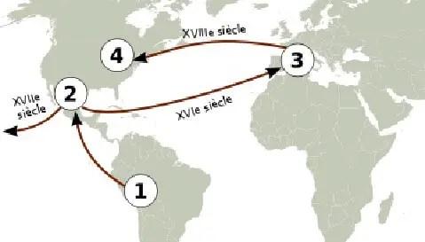 """1.Pérou, centre de diversification, 2'.Mexique: premier centre de domestication, 3ƒ.Europe: deuxième centre de domestication, 4"""". États-Unis: troisième centre de domestication.   Figure 01: Diffusion de la tomate source: (WIKIPEDIA., 2009)"""