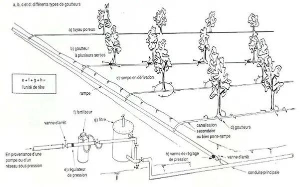 Figure : Système d'irrigation en goutte à goutte (FAO, 1983).