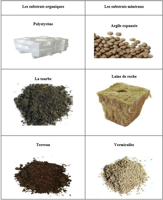 Tableau n°04 : Les principaux substrats utilisés en culture  hydroponique.