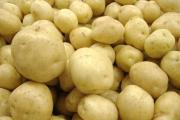 Intérêt de la culture de la pomme de terre