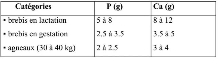Tableau n° 09: Besoins en Phosphore et en Calcium (ALUJEVIC, 1978).
