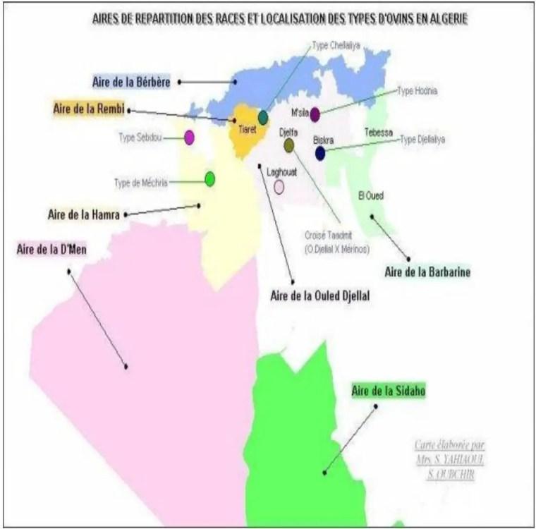Figure n° 01 : Aires de répartition des races te localisation des types d'ovins en Algérie.