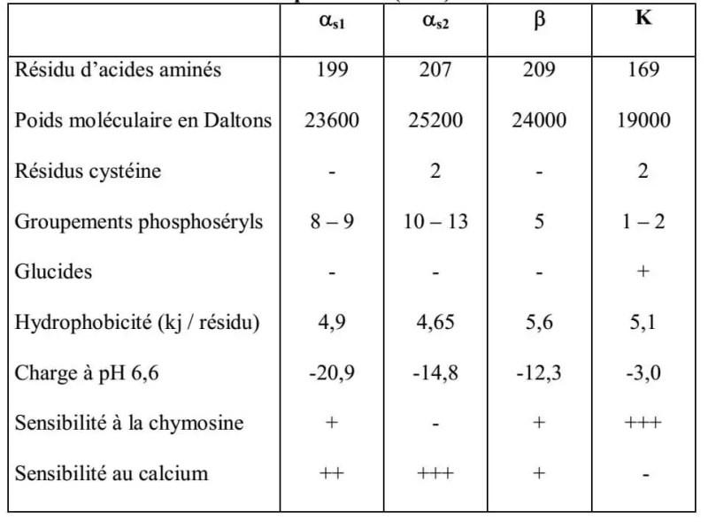 Tableau II : Principales caractéristiques physico-chimiques des caséines d'après ECK (1990).
