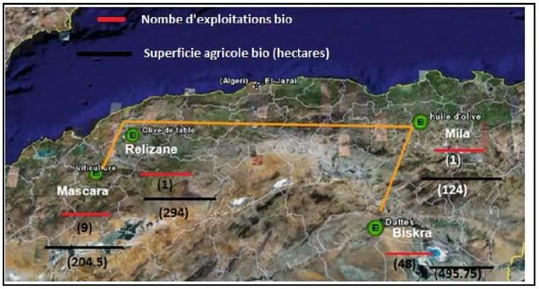 Figure 8 La superficie des terrains agricoles bios et le nombre d'exploitations bios dans les différentes régions d'Algérie. Source: Abdellaoui, 2012.