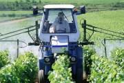 Les pesticides au XXe siècle