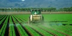 Problématique environnementale des pesticides