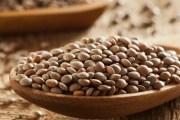 Intérêt nutritionnel de la lentille