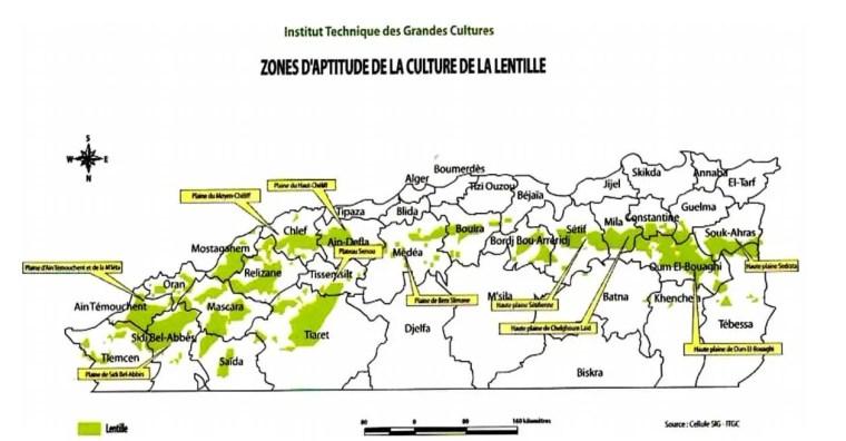 Figure 3 : Zones d'aptitude de la culture de la lentille en Algérie (ITGC, 2013).