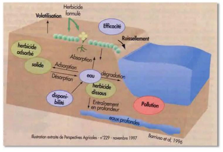 Figure 1: Écodynamique et transfert des pesticides dans l'environnement(Barruiso and Houot, 1996)