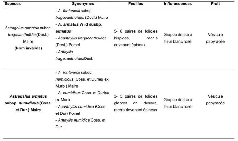 Tableau 2. Caractères morphologiques des taxons étudiés.