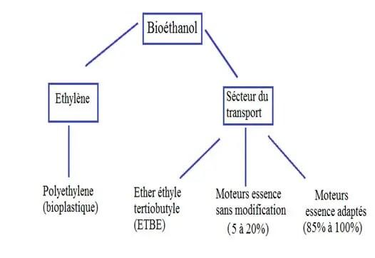 Figure 2 Utilisation potentielle du bioéthanol (Demirbas, 2008).