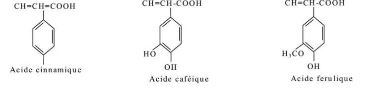 Figure 2 : Exemple de quelques acides phénols de la série cinnamique.