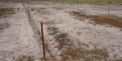 La salinisation des sols dans le monde