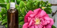 Définition des huiles essentielles