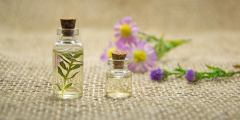 Caractéristiques des huiles essentielles