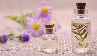 Les méthodes d'extraction des huiles essentielles