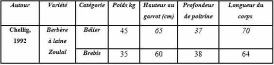 Tableau n°5 : Mensurations de la race Berbère.