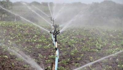 Le rôle de l'eau dans le sol
