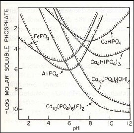 Fig 12 : Diagramme de solubilité de divers composés de Ca , Fe et Al de phosphates