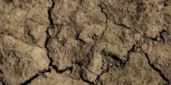 La porosité du sol
