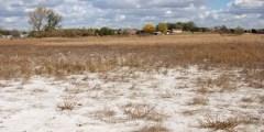 La salinisation des sols problème à l'échelle du globe