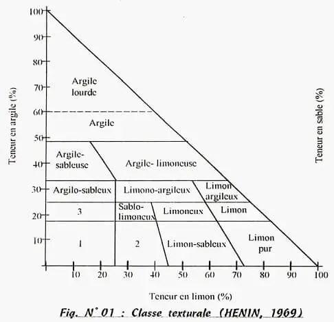 Figure n° 05 : Les triangles de texture