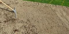 Caractéristiques des sols calcaires
