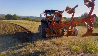 Effets du travail du sol