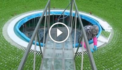فيديو .. الزراعة المائية في اليابان