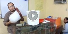 فيديو .. مستلزمات الارانب البسيطة للدكتور حسن هلال