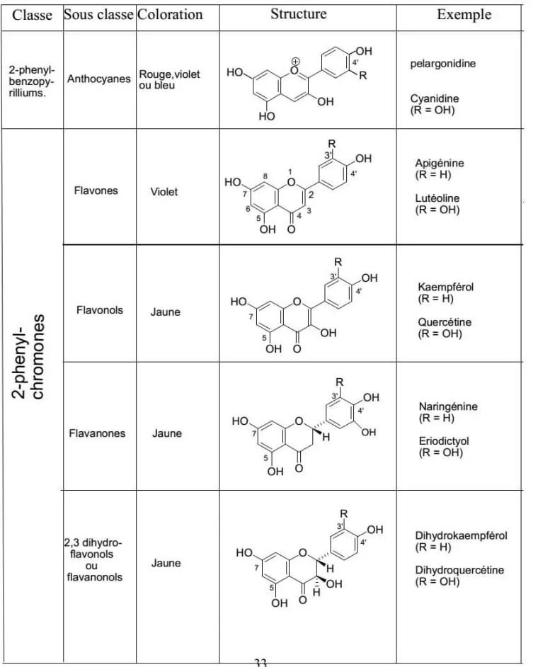 الأقسام المختلفة للفلافونويدات: