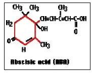 شكل : التركيب الكيميائيلحامض الأبسيسيك.