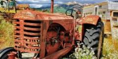 أسباب تخلف القطاع الزراعي في الدول النامية