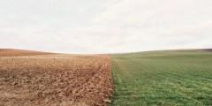 تصنيف الأراضي المالحة