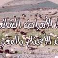 دليل الأمراض الشائعة عند الأغنام بالمغرب