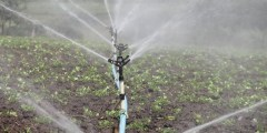 الرى بالرش Sprinkler Irrigation