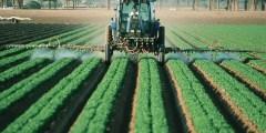 تأثيرات تطوير المبيدات الحديثة