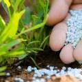 الاسمدة واستعمالاتها التوصيات والممارسات الزراعية الهامة للحد من تلوث البيئة وتحسين كفاءة استخدام الأسمدة