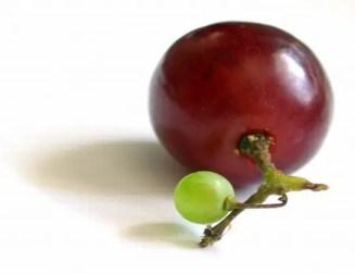 حبات العنب