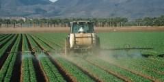 تقسيم المبيدات