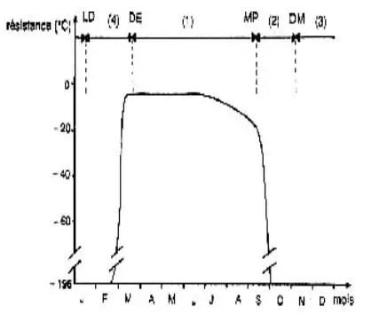 شكل (7) :التغیرات الفصلية و مقاومة البرد(C°)عند أشجار ( Cornus stolonifera) وعلاقة الحالة الفيزيولوجية للأغصان بذلك.  رفع الكمون(LD)،إكماخ البراعم (DE)، التخشب (MP) ،كمون اعظمي (DM) ،نمو نشط مع كبح للبراعم الإبطية (1) ،دخول الكمون(2)، رفع الكمون (3) ،منطقة كمون (4)، (Fuchigami et al, 1982).