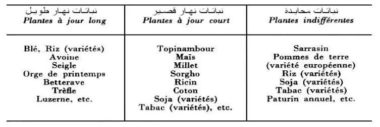جدول II:تقسيم بعض الأنواع النباتية المزروعة حسب استجابتها للفترة الضوئية( Duthil،1973).