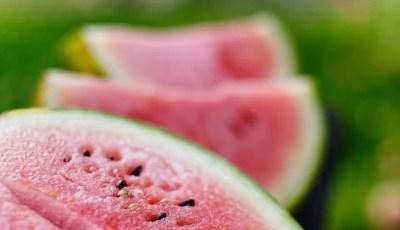 المتطلبات الحرارية لمحصول البطيخ