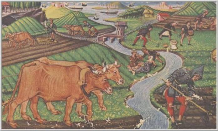 La Agricultura Feudal