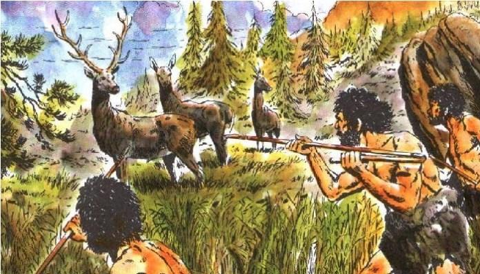 Agricultura prehistórica