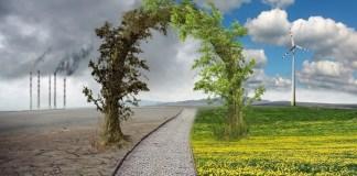 efecto invernadero y cambio climático