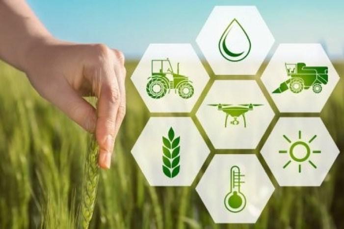 O que é agricultura de precisão? Aprenda como monitorar!